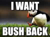 Meme unpopular opinion Puffin
